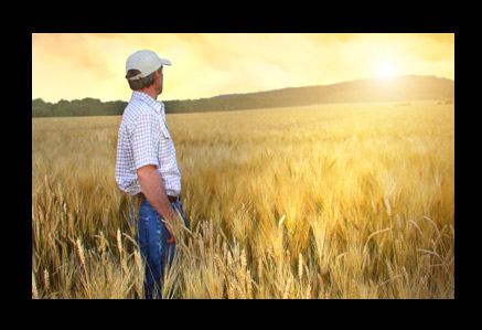 Town & Country Agribusiness | Workers Comp Insurance